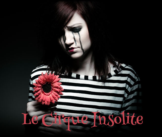 Le Crique Insolite